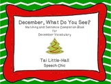 December, What Do You See? Matching and Sentence Completio