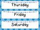 December or January Calendar Numbers