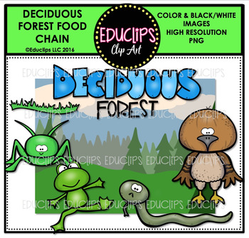 Deciduous Forest Food Chain Clip Art Mini Bundle {Educlips Clipart}