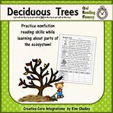 Deciduous Trees - Plant Fluency