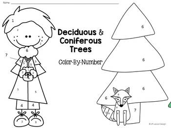 Deciduous and Coniferous Trees: Color-By-Number