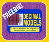 Decimal Models for Tenths & Hundredths