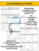 Decimal Notations for Fractions Assessments or Practice Sheets {Differentiated}