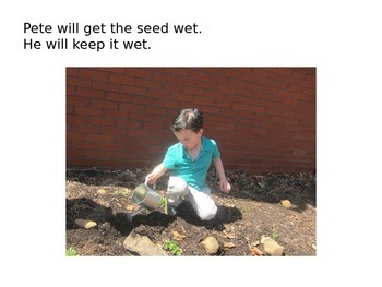 Decodable Book: Pete and Steve Plant a Seed