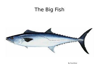 Decodable Book: The Big Fish