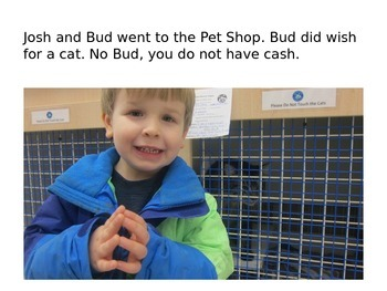 Decodable Book: The Pet Shop