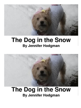 Decodable Reader: The Dog in the Snow