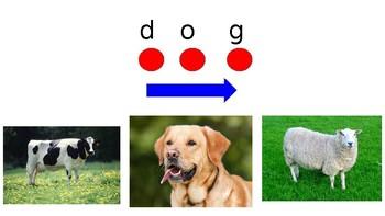 Decode animals