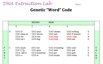 Decode the DNA Extraction Lab- includes translation and transcription
