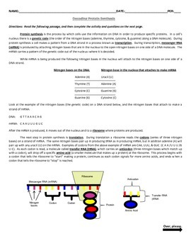 Decoding Protein Synthesis & Decoding Mutations Activities (2 Worksheet Set)