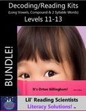 BUNDLE - Decodable Stories, Sentences, Word Cards (Lg.Vowe