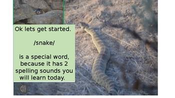 Decoding Snake