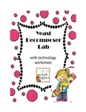 Decomposer Lab with Technology Worksheet - Food Chains & Webs