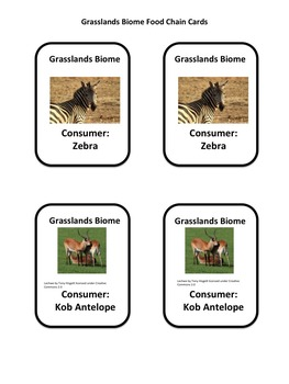 Decomposer!  The Biomes Food Chain Game