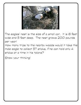 Decorah Eagle Problem Solving
