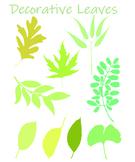 Decorative ClipArt Leaves SVG Set of 9
