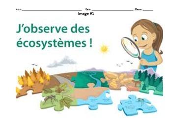 Découvrir et Discutez - Les écosystèmes