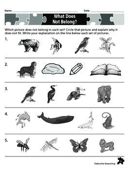 Deductive Reasoning Puzzles #1