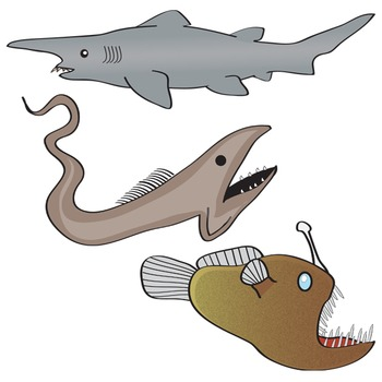 Deep Sea Life Clip Art