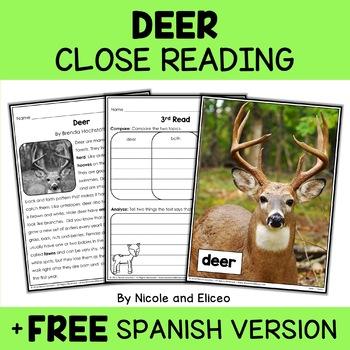 Close Reading Passage - Deer Activities