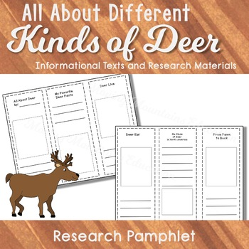 All About Reindeer, Activities and Informational Text