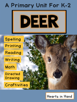 Deer For Primary K-2