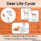 Deer Life Cycle Pack With Real Photos Forest Montessori Preschool Science