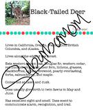 Deer-Science-Reading Comprehension- Writing