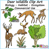 Deer Clip Art and Biology Clip Art (Wildlife Art for Biomes and Projects)