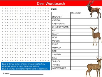 Deer Wordsearch Puzzle Sheet Keywords Activity Animals Nature