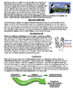 Defense Mechanism Summaries
