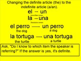Definite and Indefinite Articles in Spanish