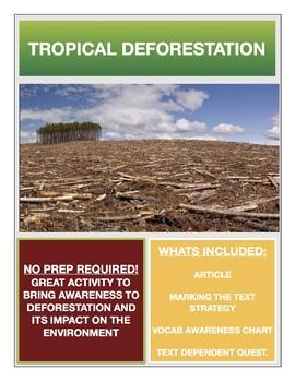 Deforestation Activity