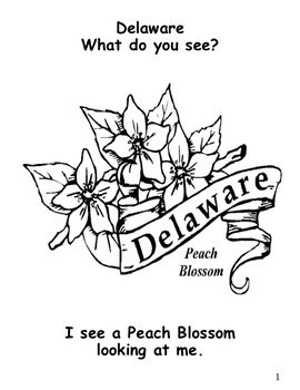 Delaware State Symbols Student Book