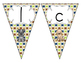 Delightful Dogs Welcome Pennant: Paw Prints Set