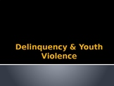 Delinquency and Youth Violence