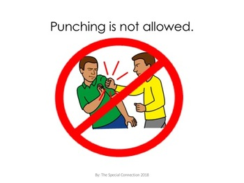 Deluxe Behavior Social Story: No Punching