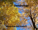 Dendrology Powerpoint