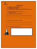 Density Lab Sheet