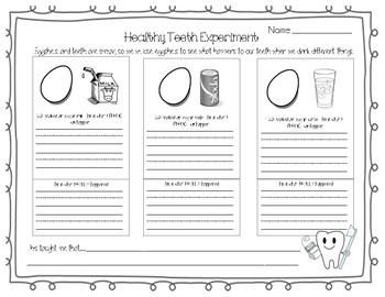 Dental Experience - Egg Shells