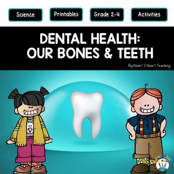 Dental Health Month Activities Our Bones Teeth And The Parts Of A Tooth
