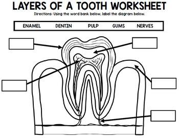 Dental Health - Teeth - Special Education - Life Skills - BUNDLE