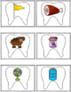 Dental Health Themed CVC Word Work