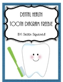 Dental Health Tooth Diagram Freebie