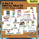 Dental Health Vocabulary Word Wall Cards (set of 9)