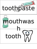 Dental Health Word Wall Words