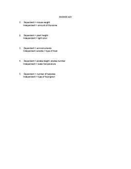 Dependent vs. Independent Variables