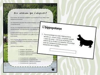 Des animaux qui s'adaptent (hippopotame, anaconda) (Sciences)