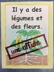 Des cycles de vie- FRENCH-Posters of Life Cycles