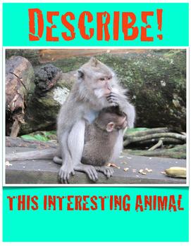 Describe an Interesting Animal Vol.1